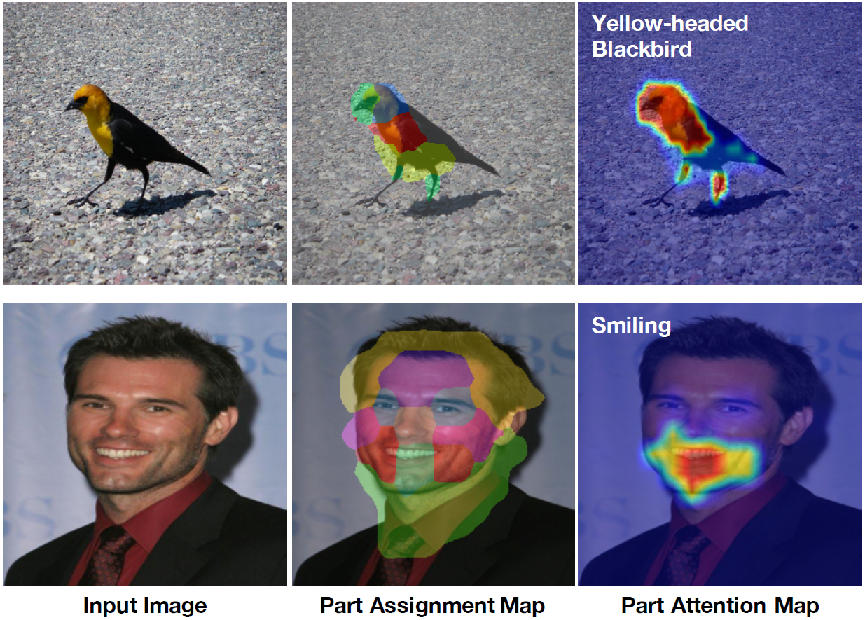 Interpretable and Accurate Fine-grained Recognition via Region Grouping